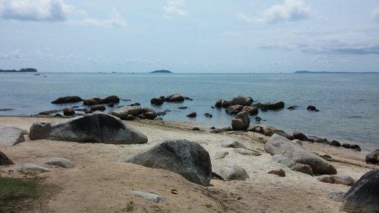 Bintan Agro Beach Resort: Beautiful rocks along the beach