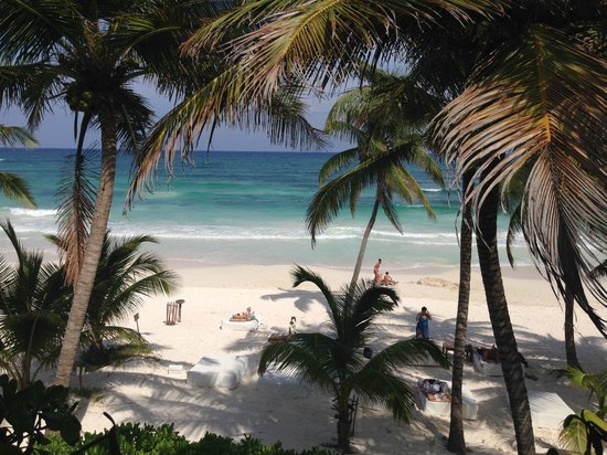 The Beach Tulum: View from private sun-bath area