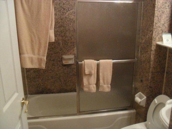 Da Vinci Hotel: O banheiro é pra ser dividido mesmo, e é bem limpo