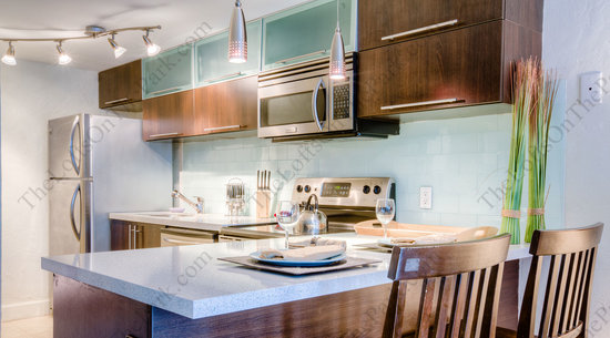 The Lofts on the Park: GOURMET KITCHEN
