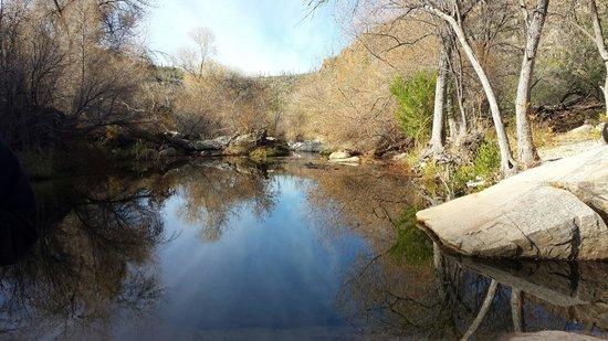 Sabino Canyon : Yes...water!