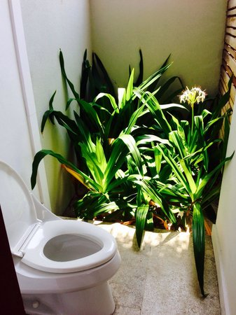 Dusit Thani Maldives: Outdoor WC at the market.