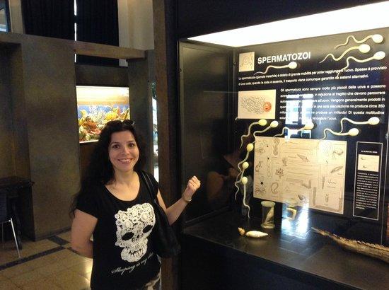 Museo Civico di Zoologia : вот такие экспонаты