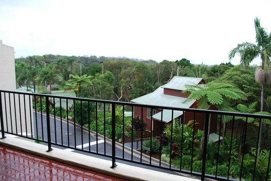 The Oasis Resort & Treetop Houses : View over the tree tops to water glimpses.