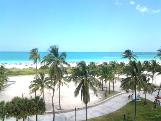 The Tides South Beach: The view from our room...very nice