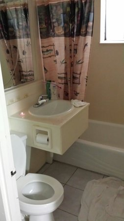 West Shore Motel Lodge : Clean tub , nice shower head,  great set up. Wish they had a better toilet, but wasn't a problem
