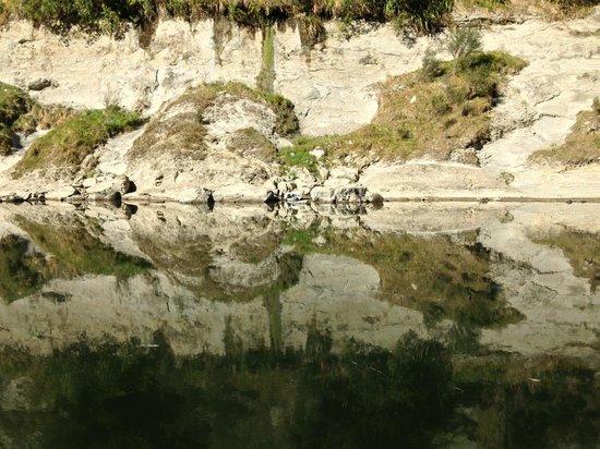 Whanganui River Adventures: Wanganui River Reflections II