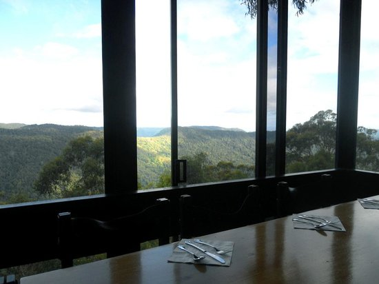 Binna Burra Mountain Lodge : Viewfrom the dining room