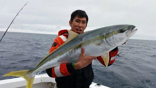 Target Fishing Charters: 1.2m kingies.!