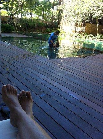 Fontana Hotel Bali: watching daughter swimming