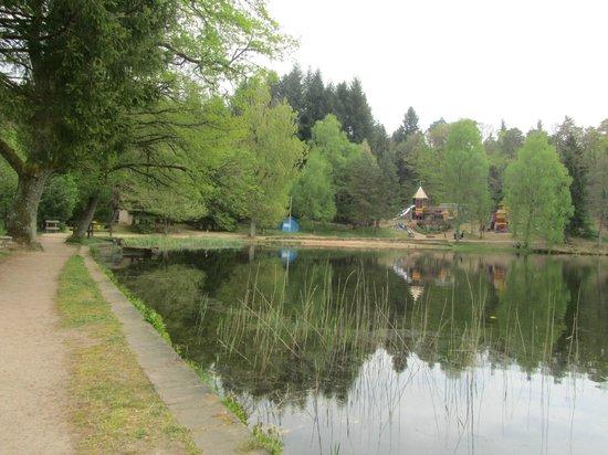 vue depuis la terrasse de l'Auberge du Lac
