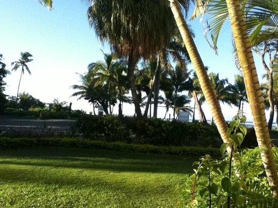Bedarra Beach Inn: View to beach
