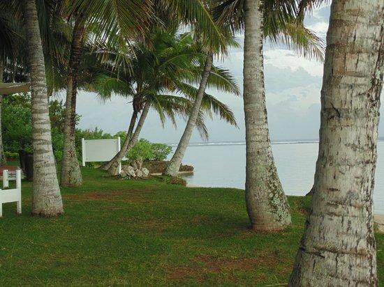 Bedarra Beach Inn: View from Beach