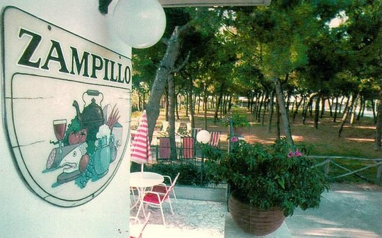 La pineta dell'Hotel Zampillo