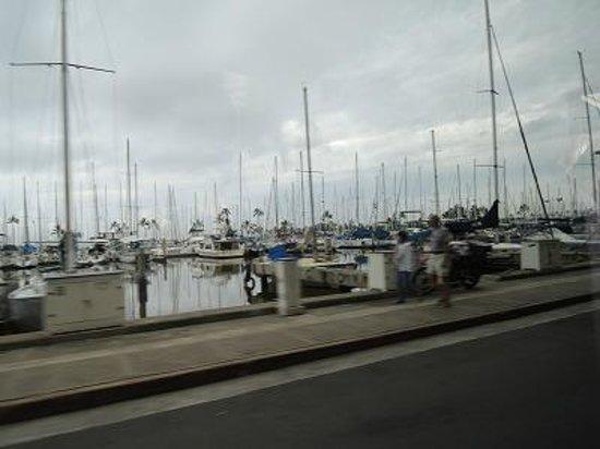 Honolulu Harbor: たくさんの船