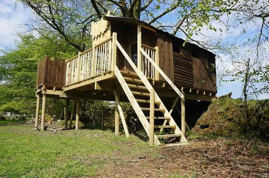 Berridon Farm: Treehouse