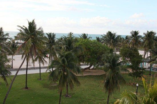 Hotel Breakwater South Beach : Aussicht von der Terrasse (Roof top Suite)
