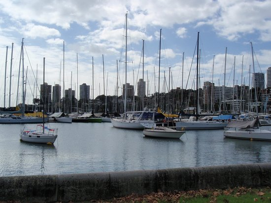 Vibe Hotel Rushcutters Bay Sydney: Rushcutters Bay