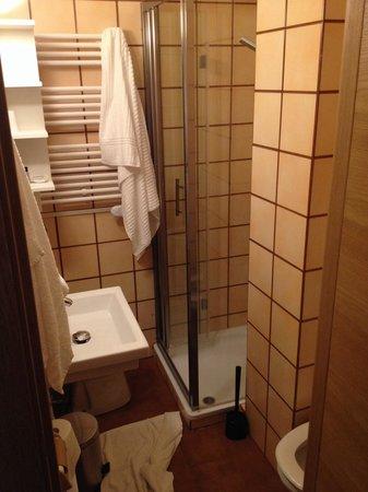 Hotel Monterosa: Bagno in camera