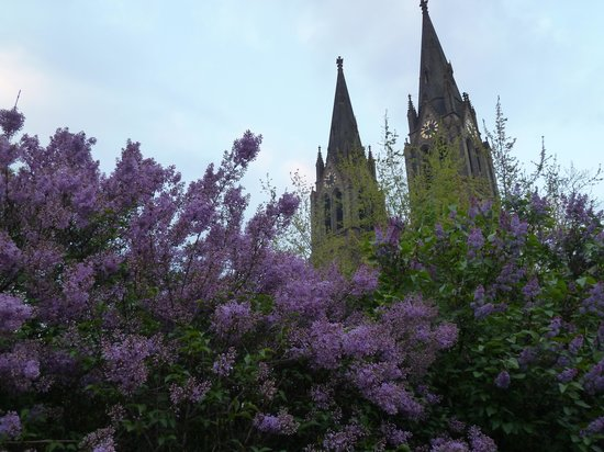 HOLIDAY HOME: Park mit Kirche