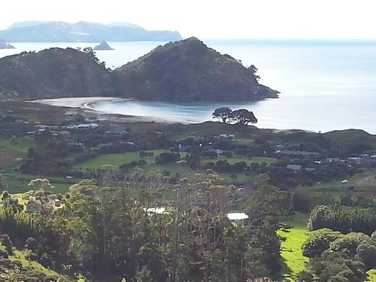 Go Great Barrier Island - Day Tours : Medlands Beach