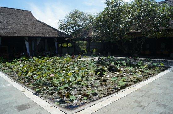 Belmond Jimbaran Puri: Lily Pond
