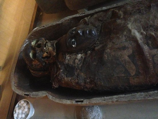 Indian Museum (Jadu Ghar): Mummy at the egyptian gallery