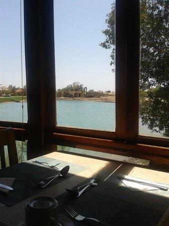 Arena Inn: Very nice restaurant view - breakfast