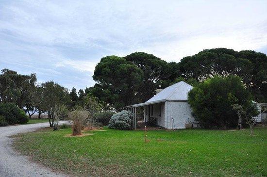 Cape Jervis Australia  city images : ... di Cape Jervis Accommodation & Caravan Park, Cape Jervis TripAdvisor