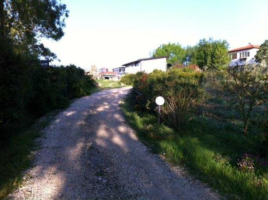 Agriturismo La Locandiera: Ingresso