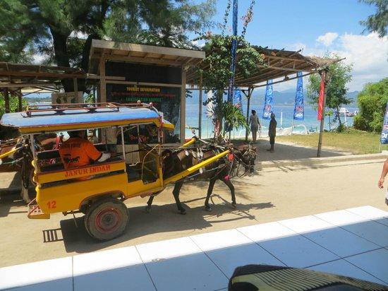 Danima Resort & Restaurant: Horse and cart on Gili T