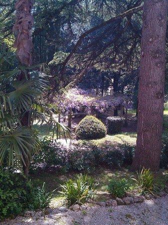Villa Sabolini Hotel : Giardino