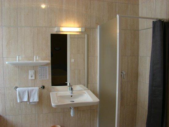 Hotel Restaurant Saint Sebastien: salle de bains pour handicape
