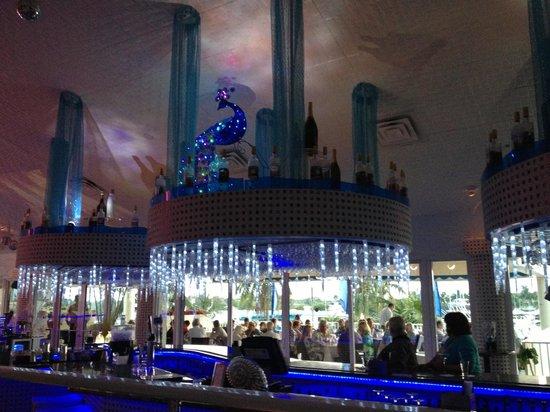 Sunset Catch Restaurant : Bright, modern, and unique decor