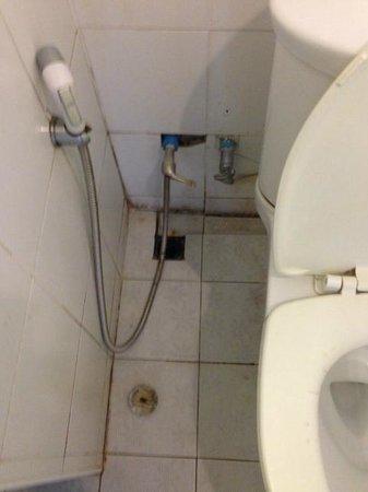 Khurana Inn: Toilet