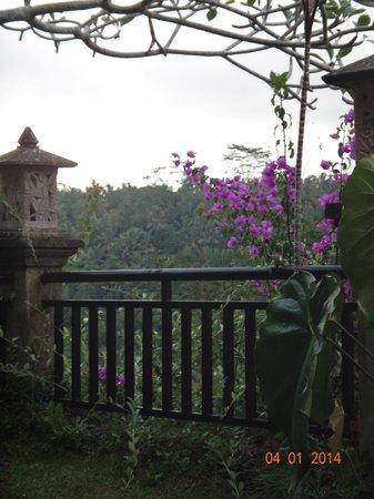 Rijasa Agung  - Bali Ubud Luxury Hotel Resort Villa : view from garden