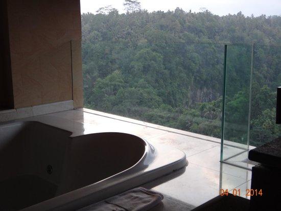 Rijasa Agung  - Bali Ubud Luxury Hotel Resort Villa : jacuzzi view