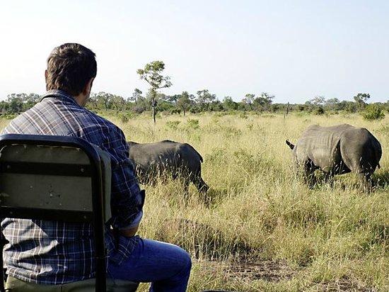 Umkumbe Safari Lodge: Auch Gäste dürfen mal ganz vorne sitzen