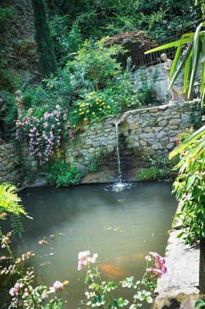 Le jardin d 39 eden picture of le jardin d 39 eden tournon for Jardin d eden