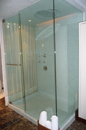 The Grand Mayan Los Cabos: Honeymoon Suite Shower