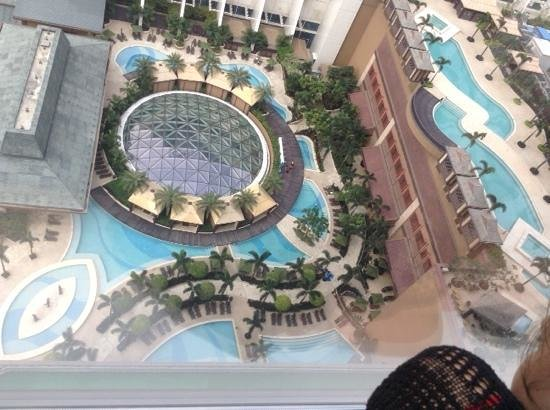 Sheraton Grand Macao Hotel, Cotai Central : wow pools
