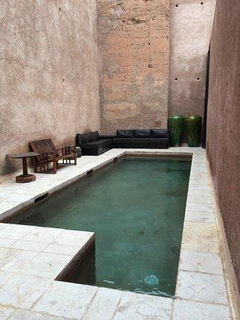 Villa Makassar: The Pool