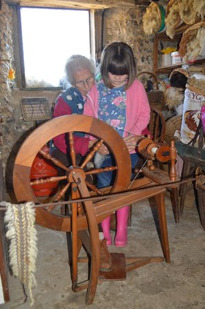 Seven Sisters Sheep Centre: Spinning sheep fleece into wool