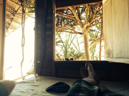 Cinnabar Resort: Treehouae