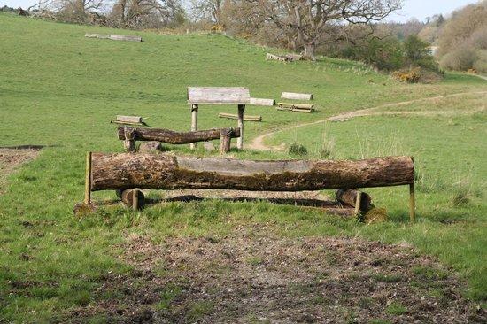 Castle Leslie Estate: Some of the fences, a lot of logs
