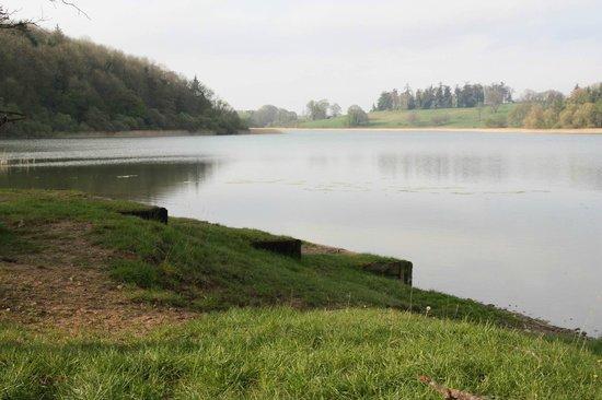 Castle Leslie Estate: Some of the fences, steps down the lake