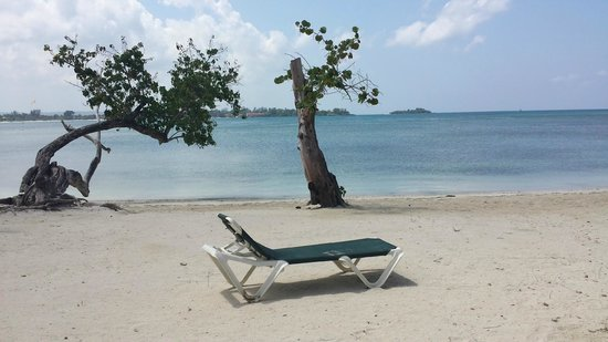 Hotel Riu Negril : Your chair awaits