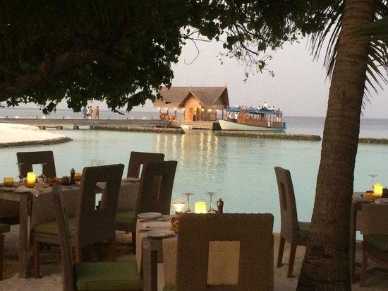 Constance Moofushi: AI restaurant