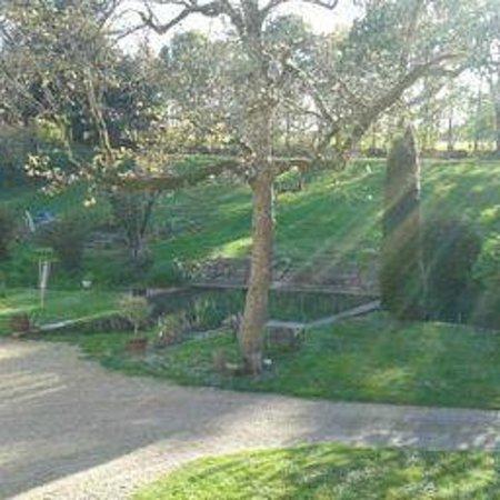 Domaine de Joreau: Le jardin de Petra vu depuis la chambre