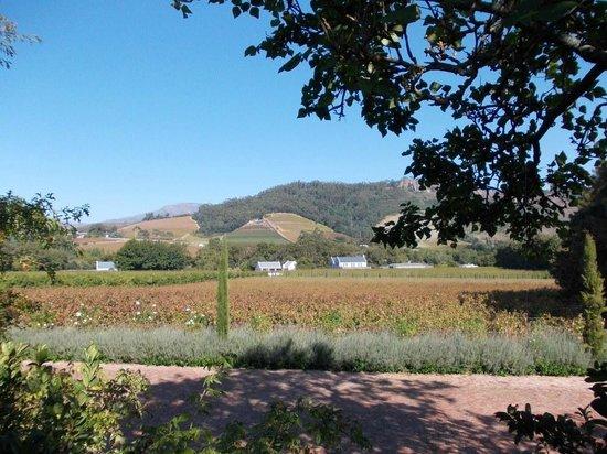 La Cle des Montagnes: Winelands